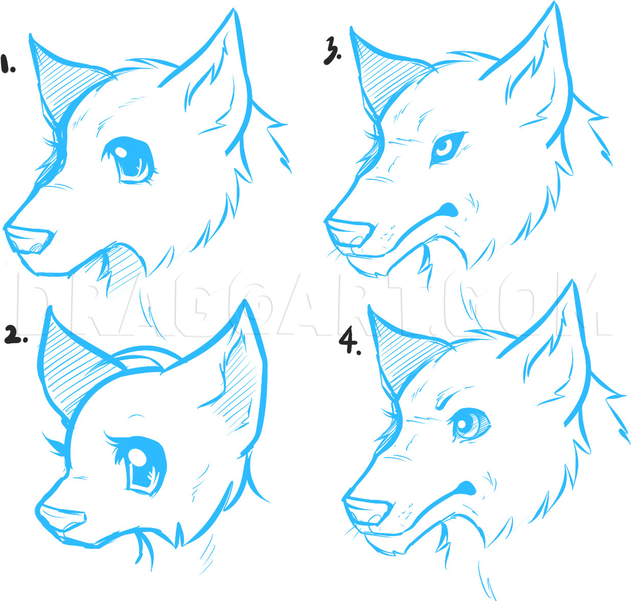 How To Draw Anime Wolves Anime Wolves Step By Step Drawing Guide By Dawn Dragoart Com