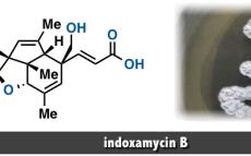 indoxamycin B