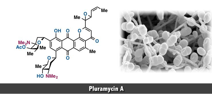 Pluramycin A