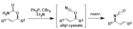 Ichikawa Allylcyanate Rearrangement