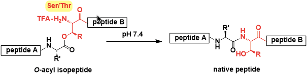 O-Acylisopeptide Method