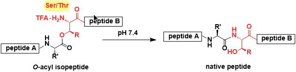 O-Acylisopeptide Method