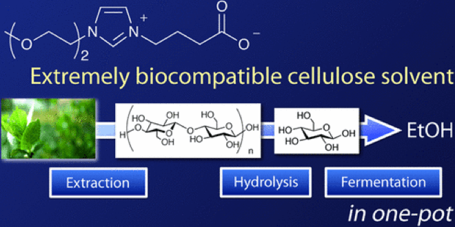 Extremely Biocompatible Solvent for Biomass: The Development of Carboxylate-type Zwitterionic Liquid