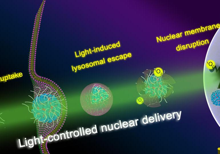 Development of a Light-Controlled Nanoplatform for Direct Nuclear Delivery of Molecular and Nanoscale Materials