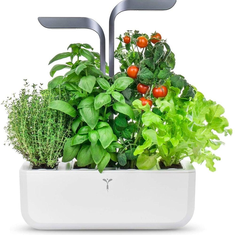 Le meilleur pour les fruits et légumes : Veritable Connect (330 $)
