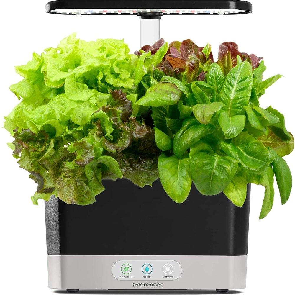 Idéal pour la salade: AeroGarden Harvest (107 $)