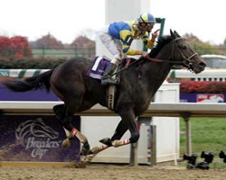 Street Sense wins the BC Juvenile in 2006.  Meanwhile, I was freezing my butt off in the paddock watching it on a realy big TV.