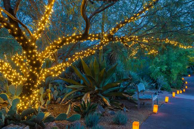 2020 guide to the best holiday lights