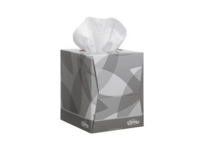 Kimberly Clark Professional Mouchoirs En Papier Kleenex 100 Fibre Vierge Couleur Blanc Dimensions L X L 21 X 20 Cm Conditionnement 1080 Boite Voir Les Resultats Fisher Scientific