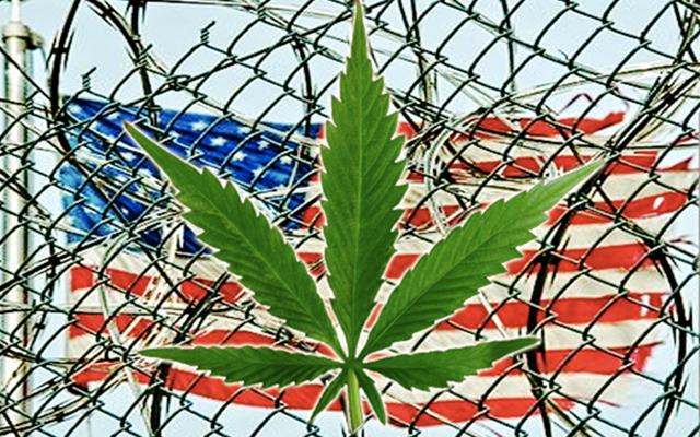an introduction to the issue of marijuana Of the three issues related to the marijuana legalization debate, marijuana and its medical use might be the most widely discussed of them all opponents of medical marijuana bring up many significant arguments as to why it should not be condoned.