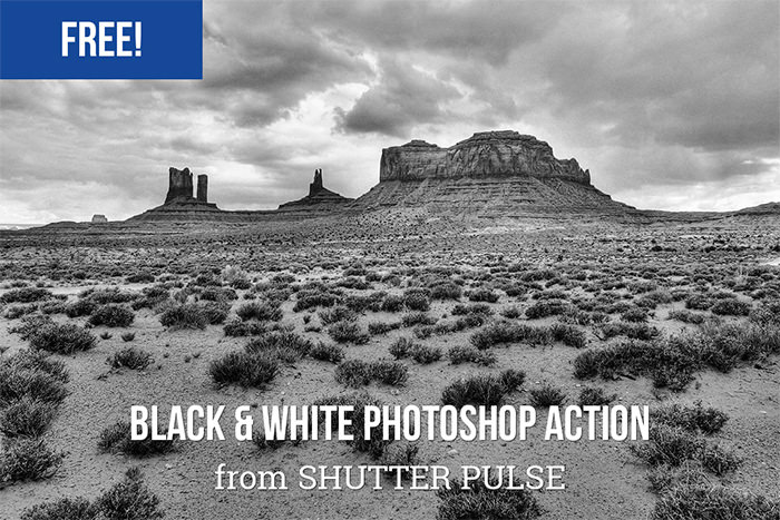 Free High Contrast Black & White Photoshop Action