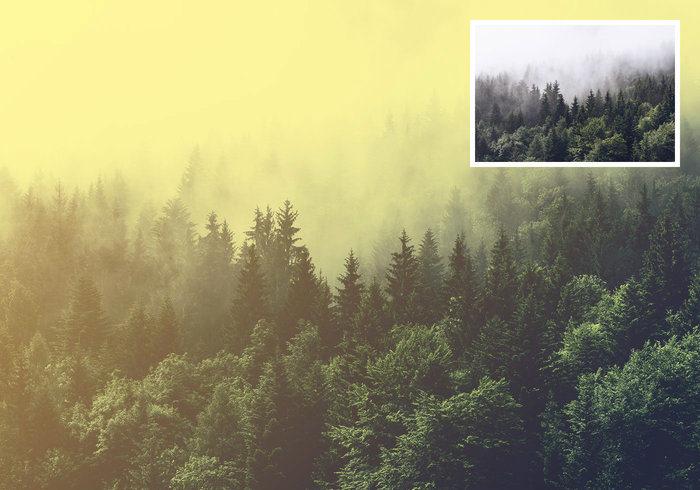 Yellow Mood Photoshop Action