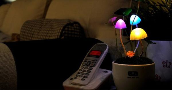 Солнечная лампа-гриб - Аватар, растение, цветы, ночник