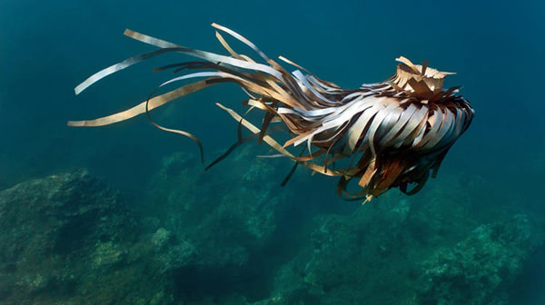 подводные скульптуры-мусор