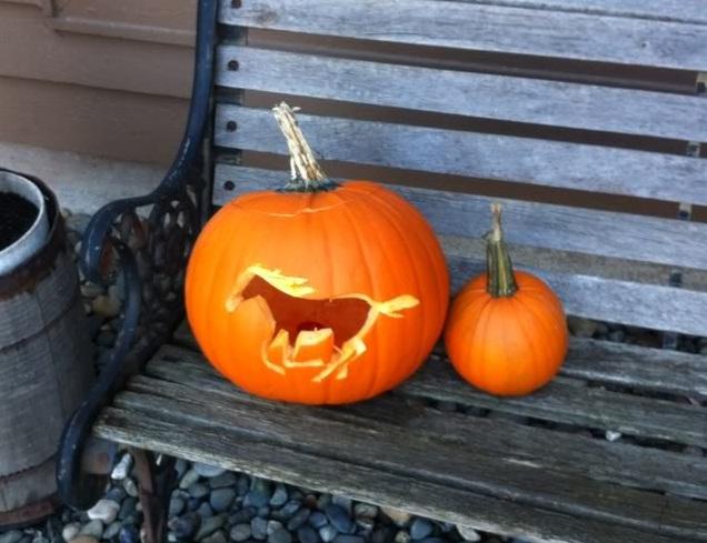 24 Impressive Horse Halloween Pumpkins HORSE NATION