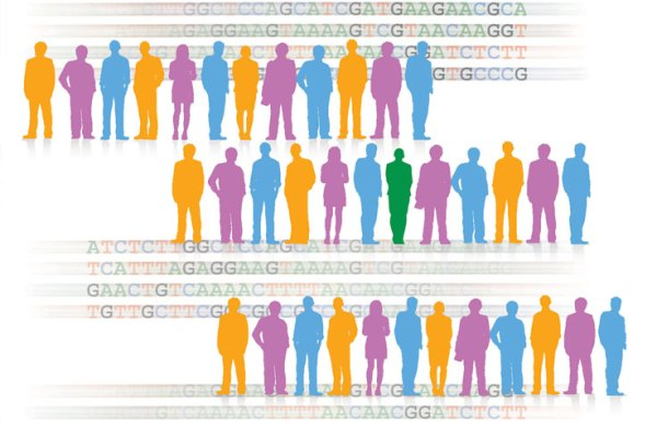 Human Genotyping | Microarrays for population and disease ...