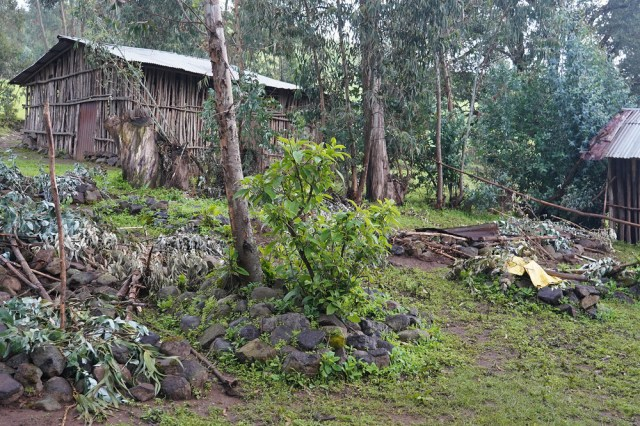 An image of two small dwellings on a lush green hillside.
