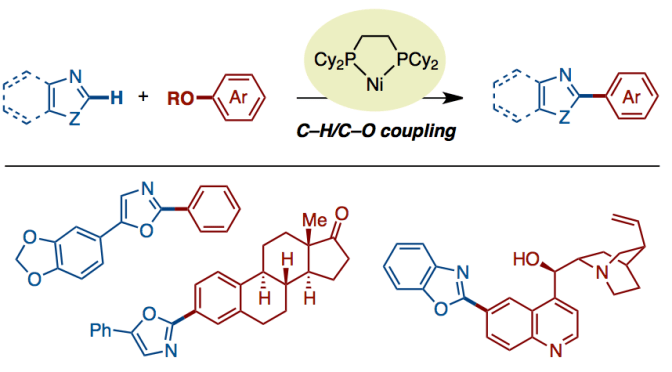 Nickel-Catalyzed C−H/C−O Coupling of Azoles with Phenol Derivatives