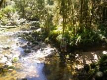 02 creek-s