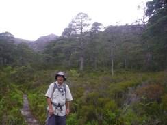0622 3 Beinn Eighe Forest
