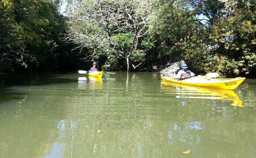 Oakley Creek with Gillian