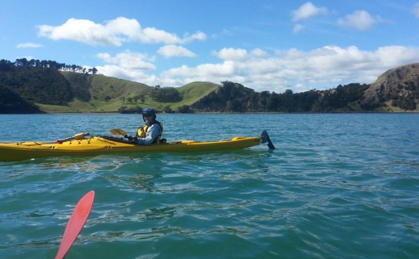 Whanganui Island