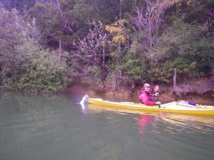 Whananaki Inlet 8