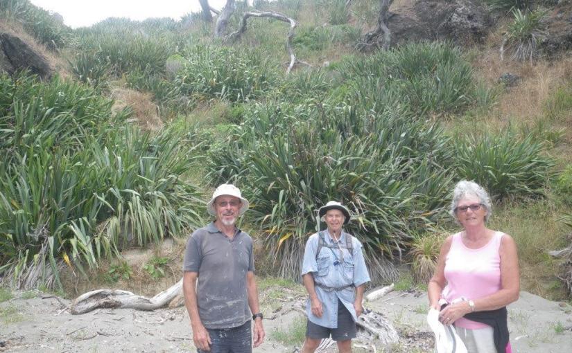 Weekend at Taupiri Bay