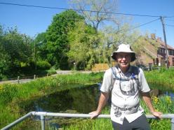 Wherryman-Surlingham-pond-3