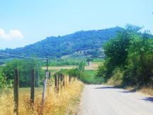Buonconvento-to-Montalcino-10