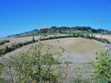 Pienza-to-Montepulciano-2