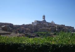 Siena-1