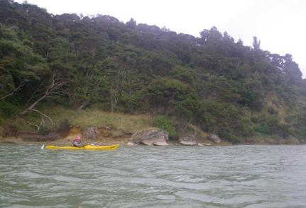 Kawhia-Harbour-6
