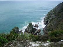 Catlins-Jacks-Bay-coast-1