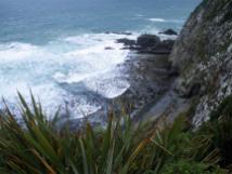 Catlins-Jacks-Bay-coast-2