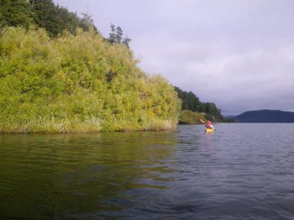 Lake-Manapouri-1