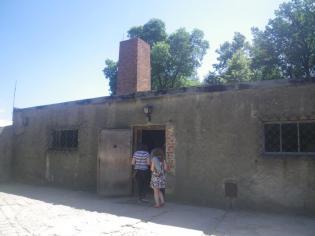 Auschwitz-8