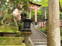 Mt Inari 1