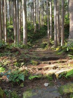 Kumano Kodo day 6 path