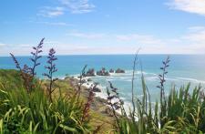 Cape Foulwind 1