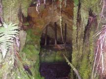 Charming Creek 6
