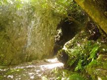 Charming Creek 7