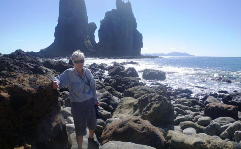 Fletcher Bay – The Pinnacles