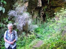 Fox cave 2