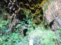 Fox cave 3