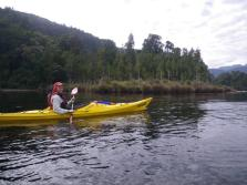 Lake Kaniere 2