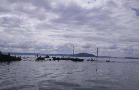 Lake Rotorua 1