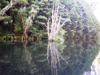 Mangakino Creek reflections 3