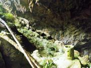 Rawhiti Cave water catcher