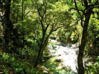 Richmond Range D5 Wairoa river